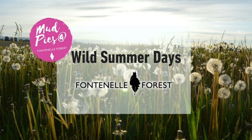 Wild Summer Days : Fontenelle